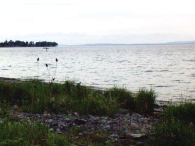 Seestimmung am Bodensee