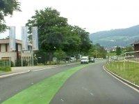 Es grünt so grün... auf Ostschweizer Strassen.
