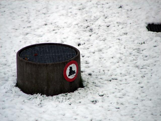 schneearbon.jpg